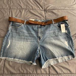 Seaside Blue Distressed Mid Rise Cutoff Shorts